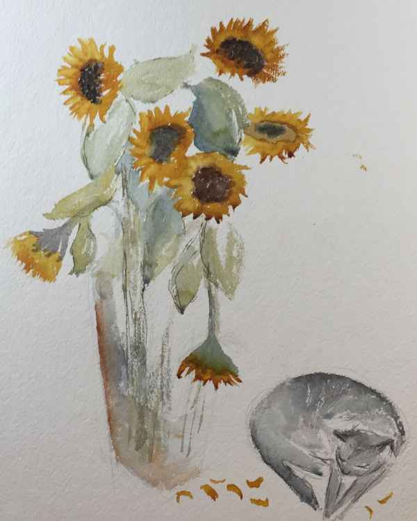 Sunflowers and cat -