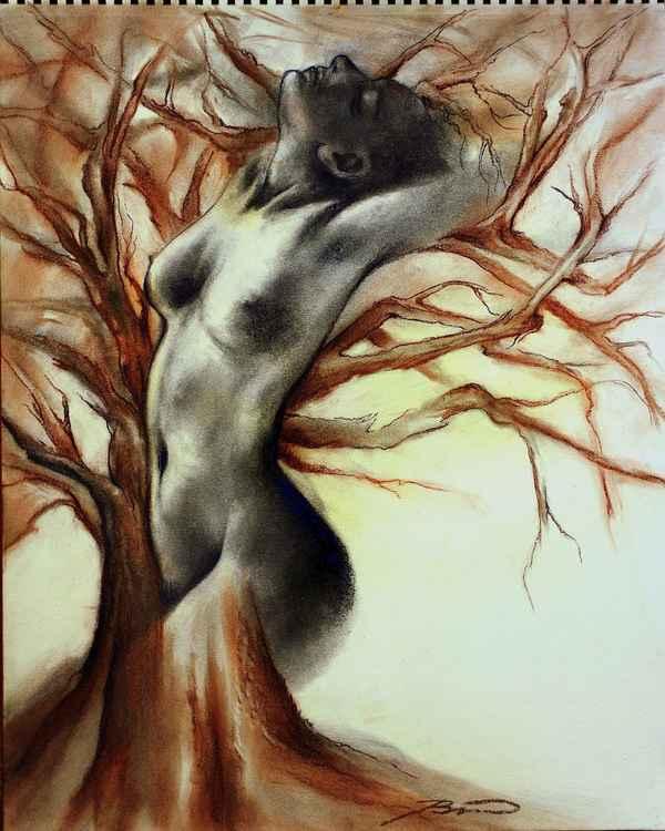 Living tree.. -