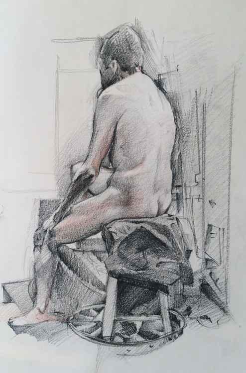Male Model Study 1
