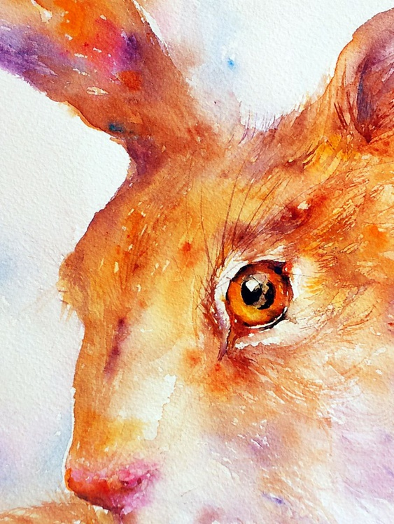Sienna Hare - Image 0