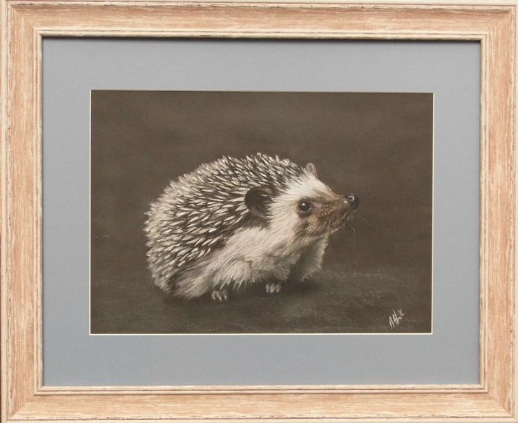 Happy Hedgehog - Image 0