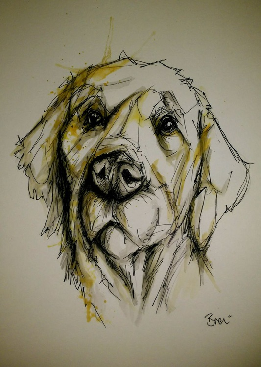 Golden Retriever Dog Doodle Caricature - Image 0