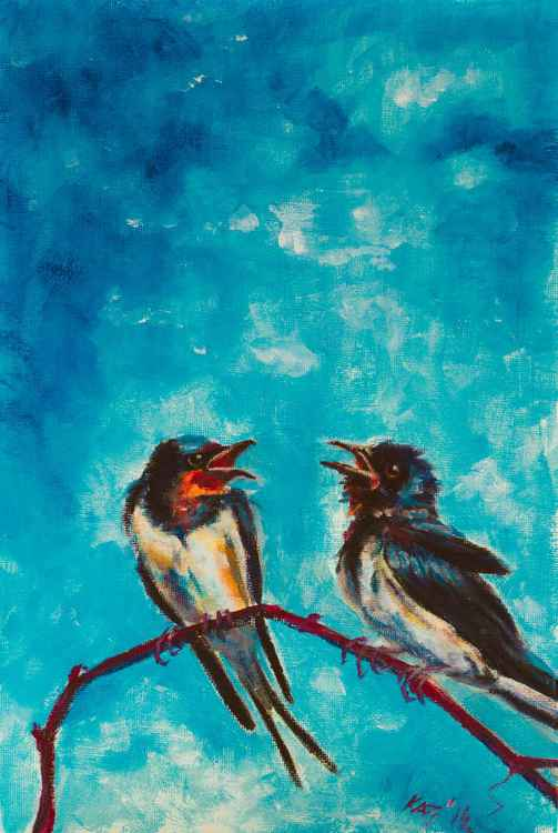 Swallows -