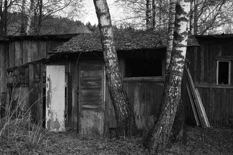 Shed Outside Moscow