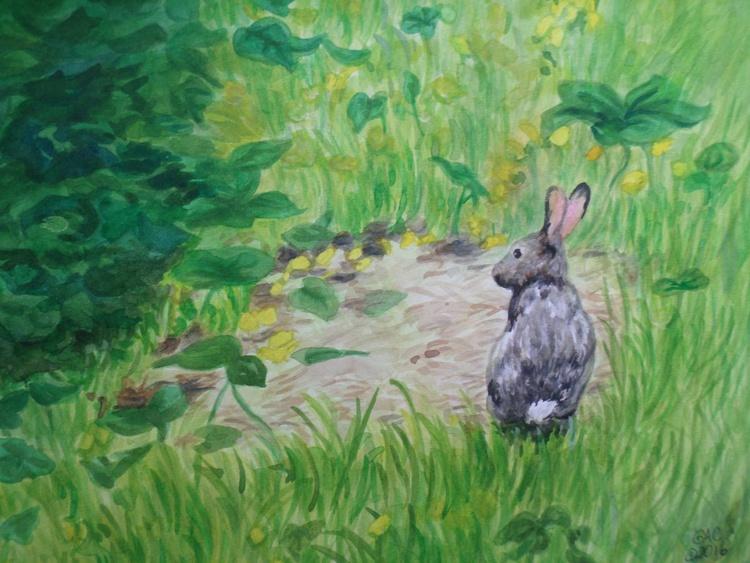 Jack Rabbit - Image 0