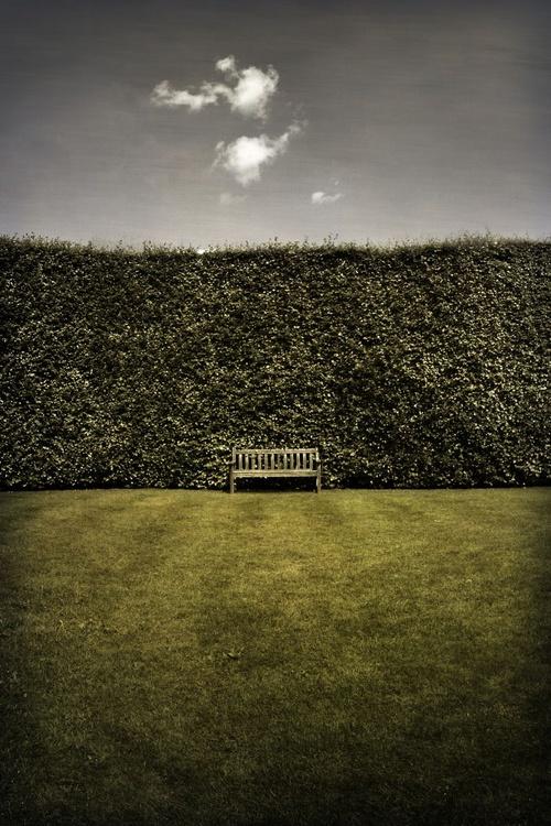 Reincarnation - Image 0