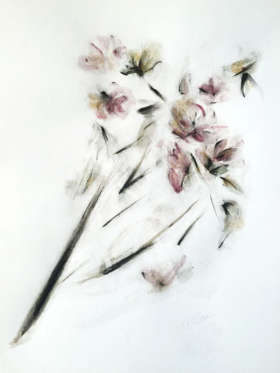 Flowers in Ink, Charcoal and Graphite - Image 0