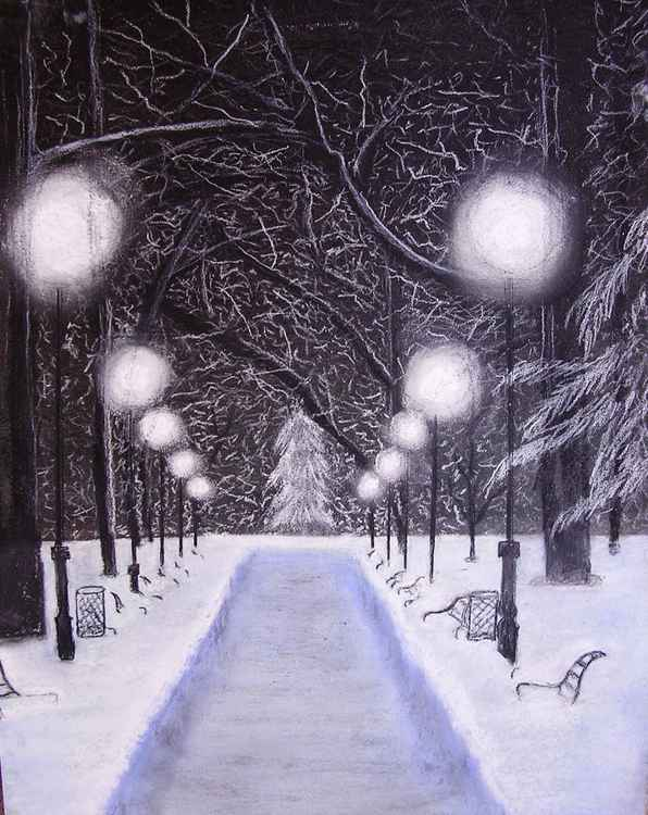 Winter Night in the Park -