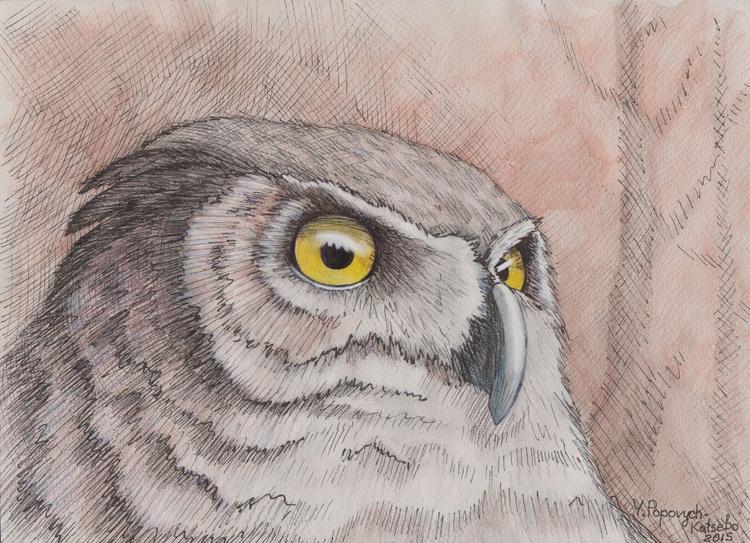 owl - Image 0