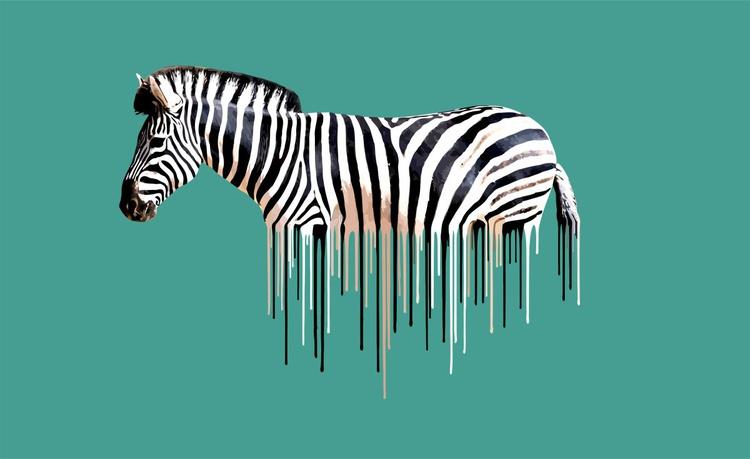 Zebra- Green - Image 0