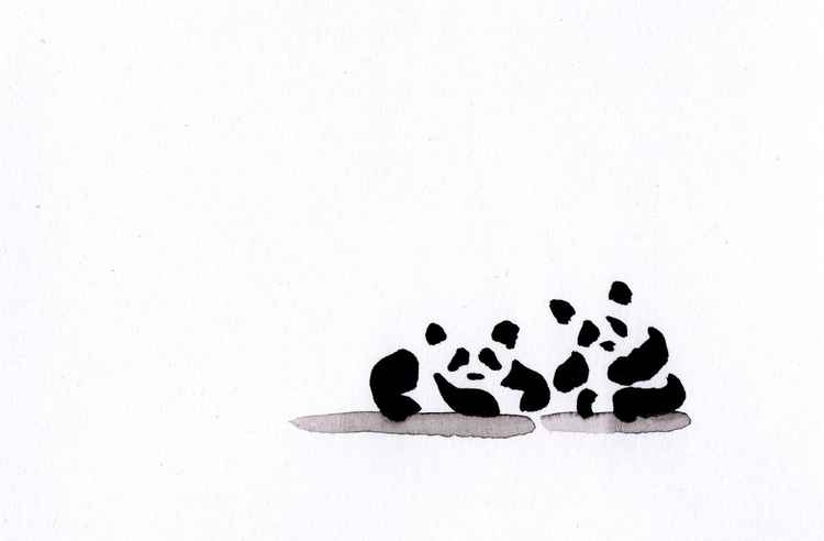 Two panda cubs 1015A -
