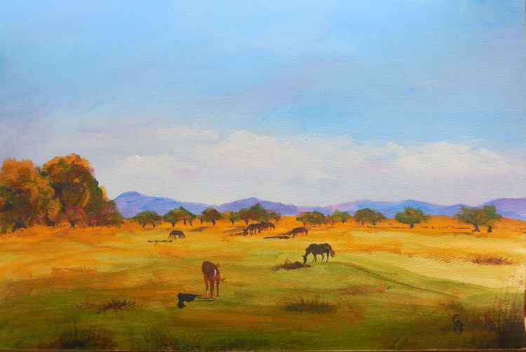 Horses Grazing near Apple Orchard -