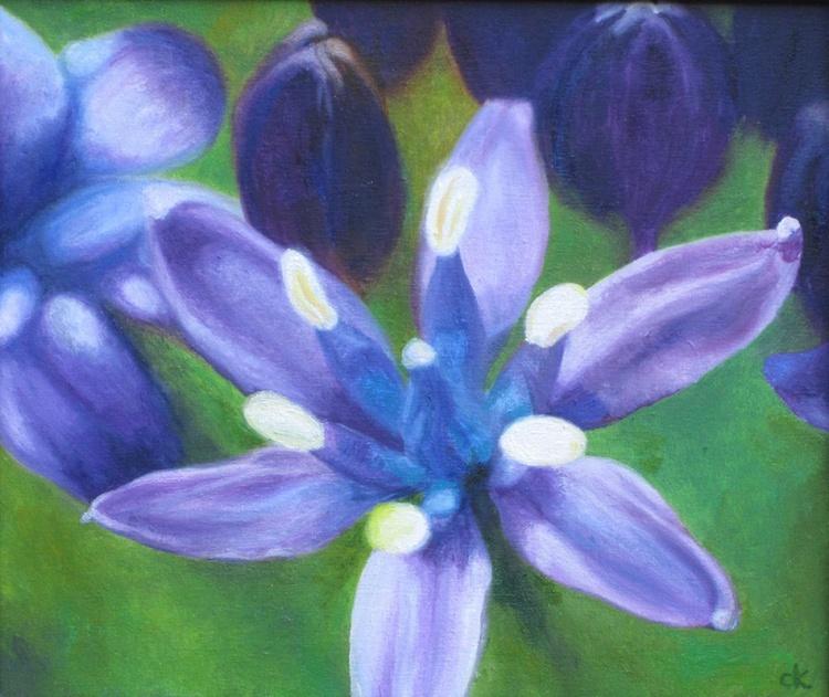Blue Allium - Image 0