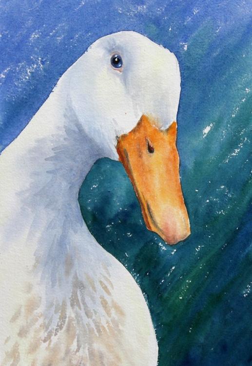 Crazy Duck - Image 0