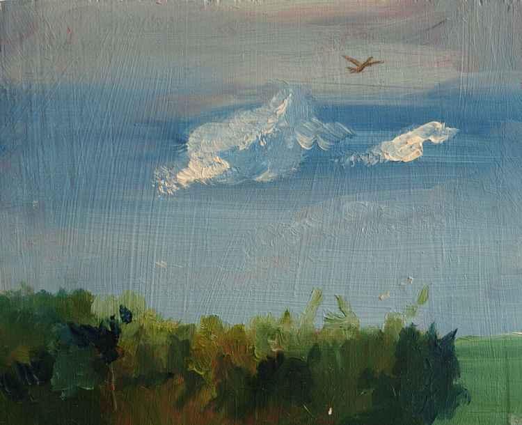 Landscape study 3 -