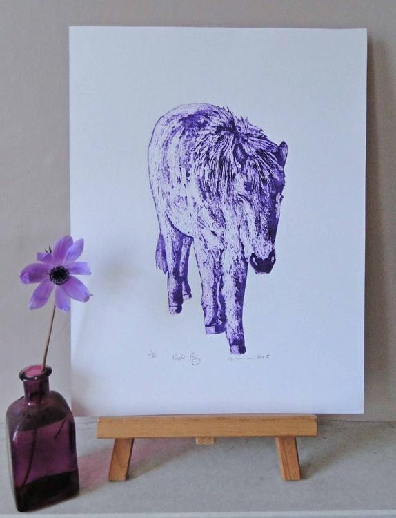 Purple Pony - Image 0