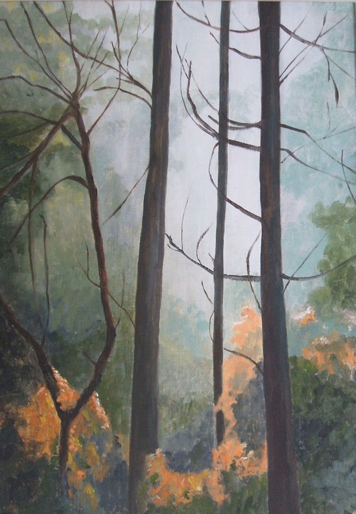 Forest Edge - Image 0