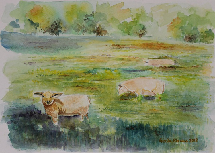 Sheep In Pasture - Image 0