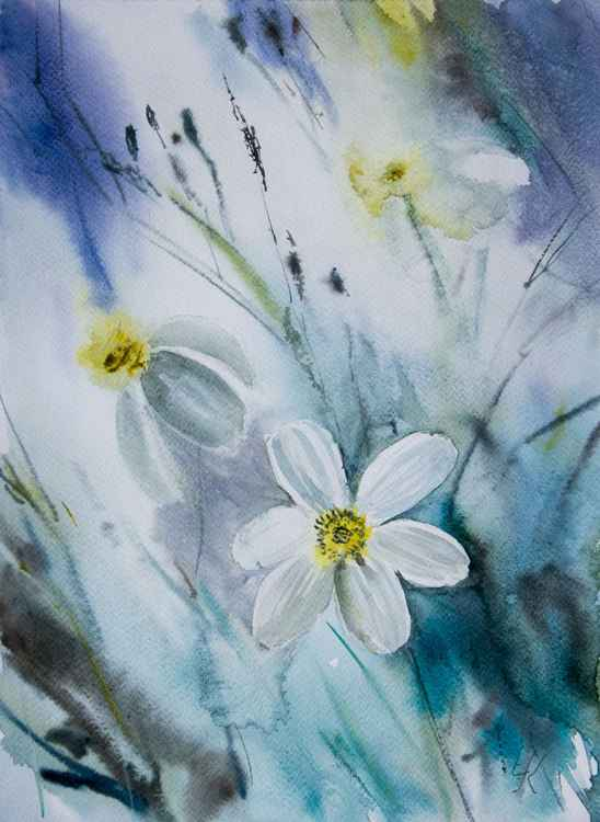 """White bidens"", original watercolour painting, 28x38cm"