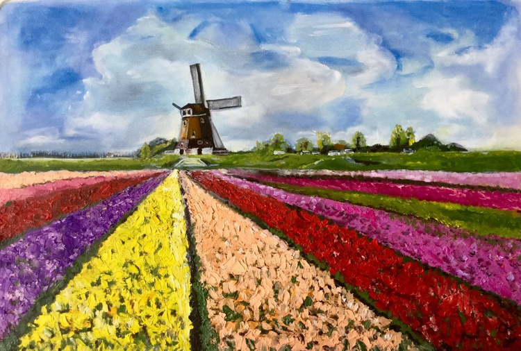 Holland fields of tulips - Image 0