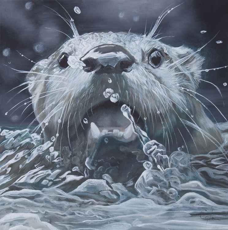 'Splash' -
