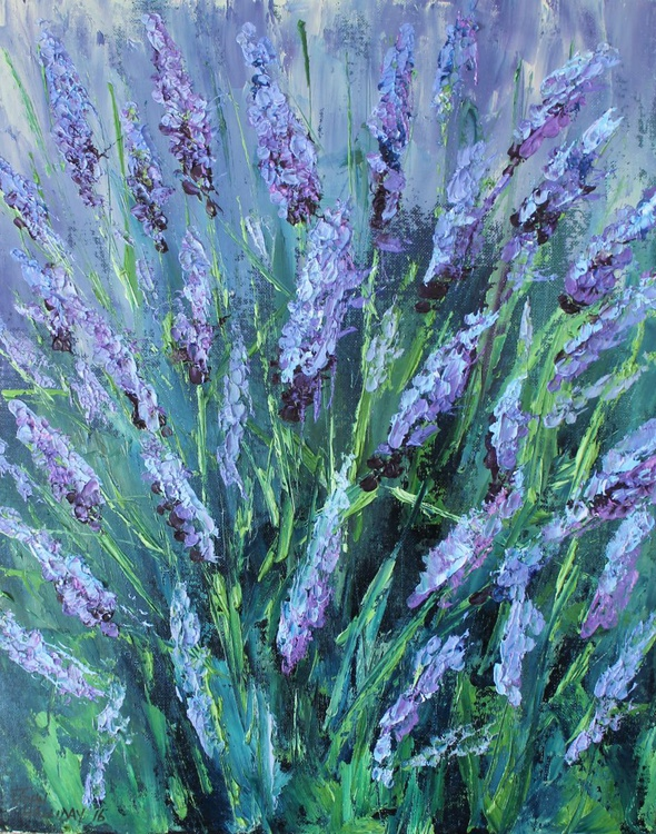 Lavender in bloom - Image 0