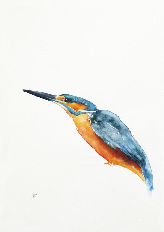Kingfisher - Image 0