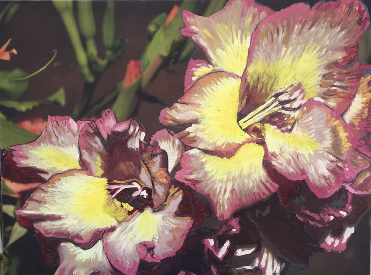 Glads All Over - Image 0