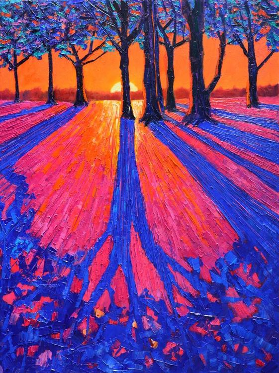 SUNRISE WITH TREES LONG SHADOWS - Image 0