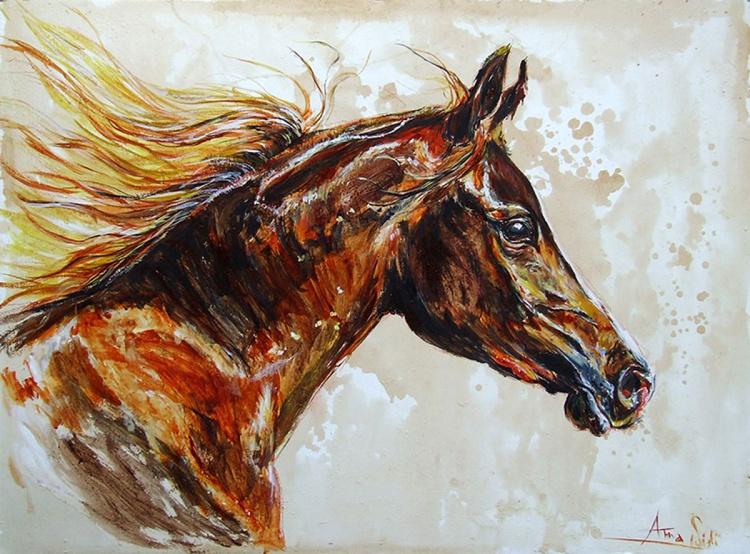 Free / Arabian Brown Horse, 2014 - Image 0