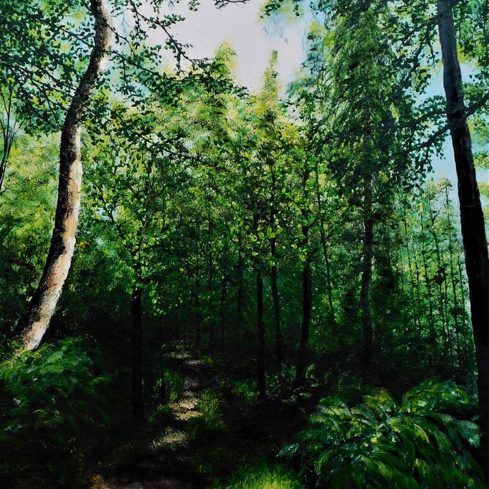 A walk Through The Forest by Hazel Thomson