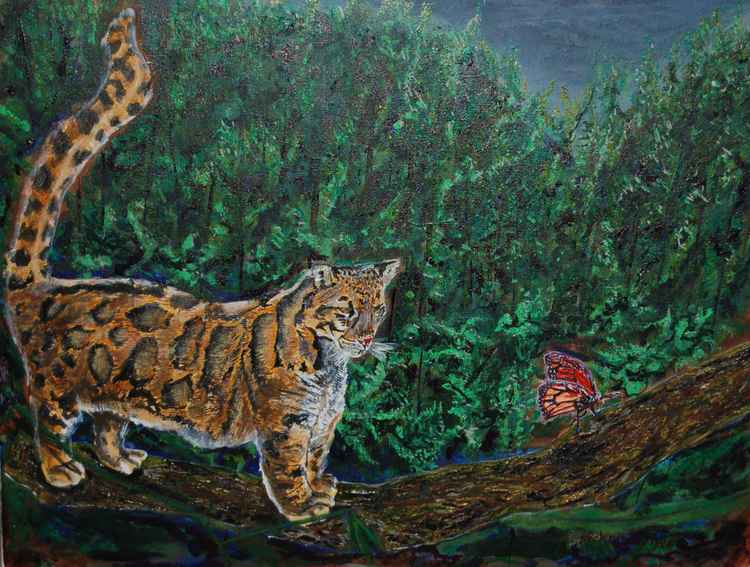 The Cloud Leopard and The Butterfly -