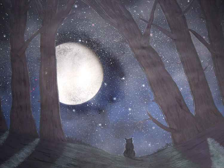 Cat in the Moonlight -