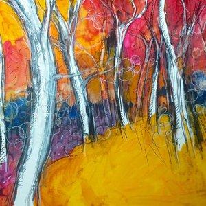 Games of light and color in the woods (Giochi di luce e colore nel bosco) by Alessandro Andreuccetti