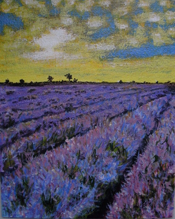 Lavender Field - Image 0