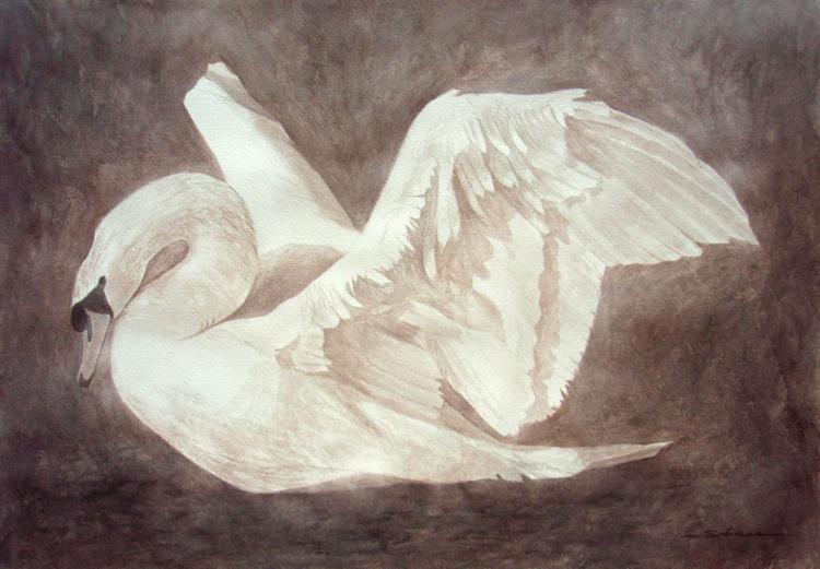 Swan II - Image 0