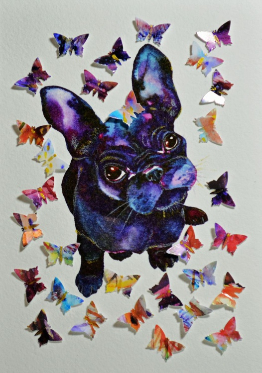 Thirty Dreams of Frenchie - Image 0