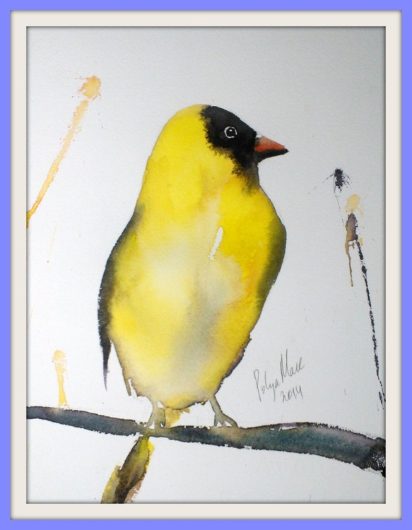 Bird # 18 - Image 0