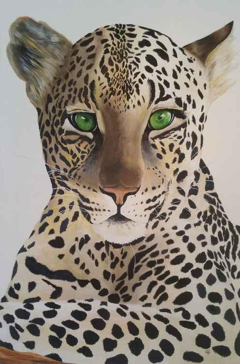 Leopard Spotting Dinner