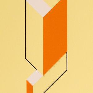 Unit Print #9 Sorbet Yellow by Dai Roberts