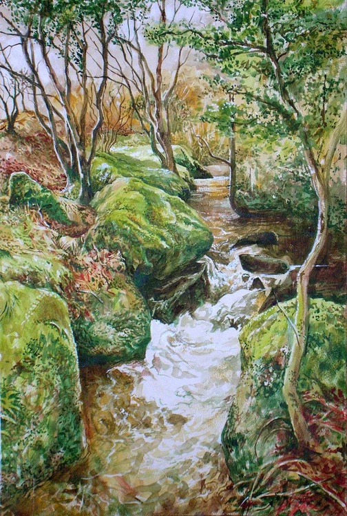 Dartmoor stream - Image 0