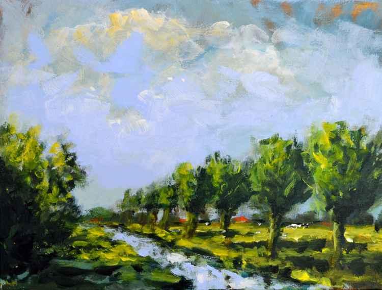 Pollard willows in the polder
