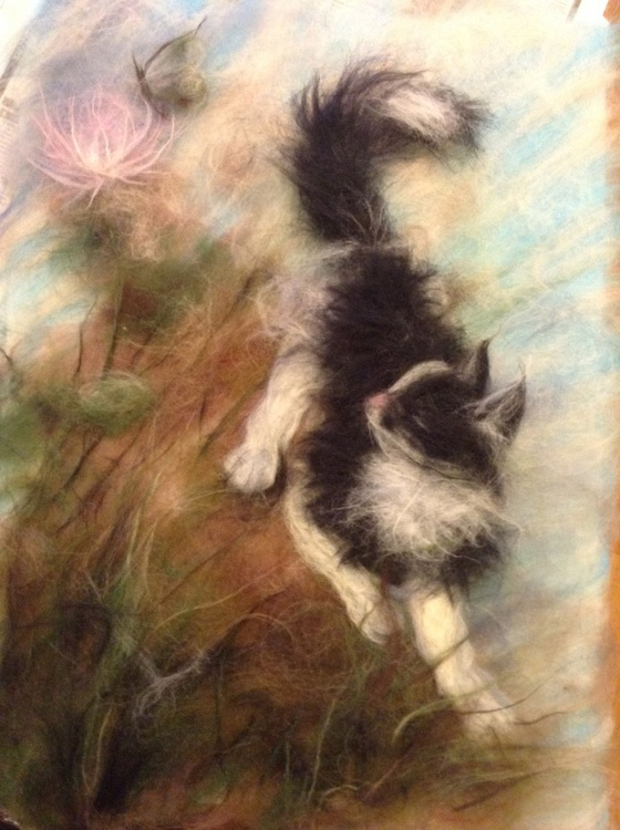 Cat in the grass - Image 0