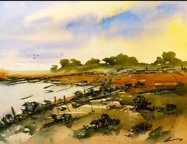 Marsh Lands -