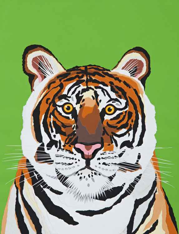 BENGAL TIGER -