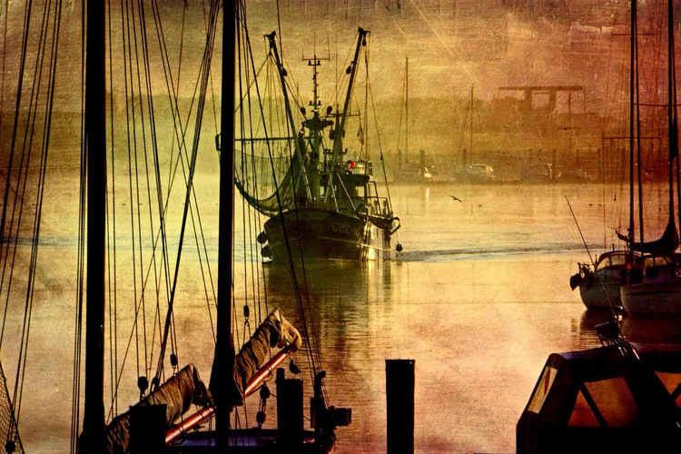 Back in the Harbour - Canvas 75 x 50 cm - Image 0