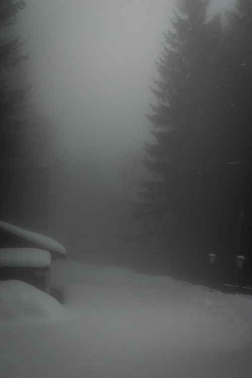 Mist on Jenner -