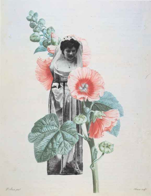 Botanical Bride -