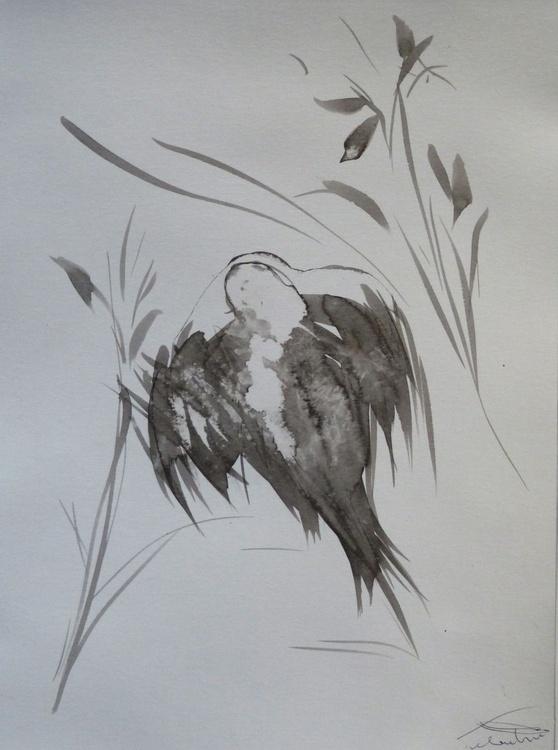The Birds of Carros #25, small budget offer 21x29 cm - Image 0