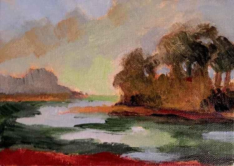 Wetlands #4